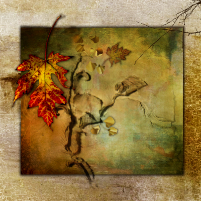 Color - Fall Collage - Linda Knox