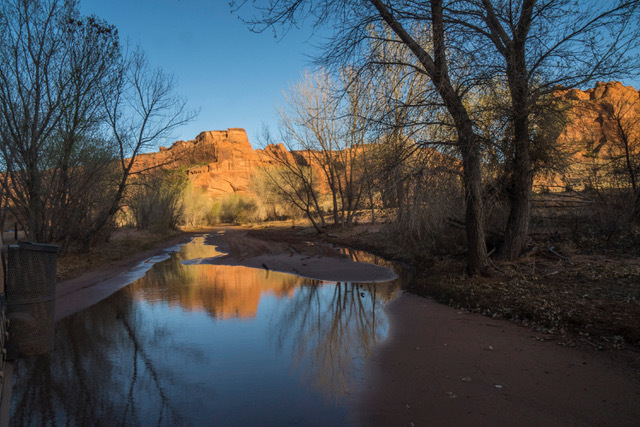 Canyon Reflection by Sharon Deeny