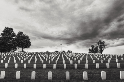 Honoring the Fallen by Holly Thompson